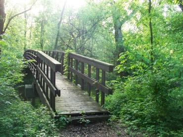 Woods bridge