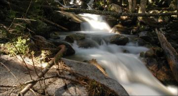 Woods Waterfall