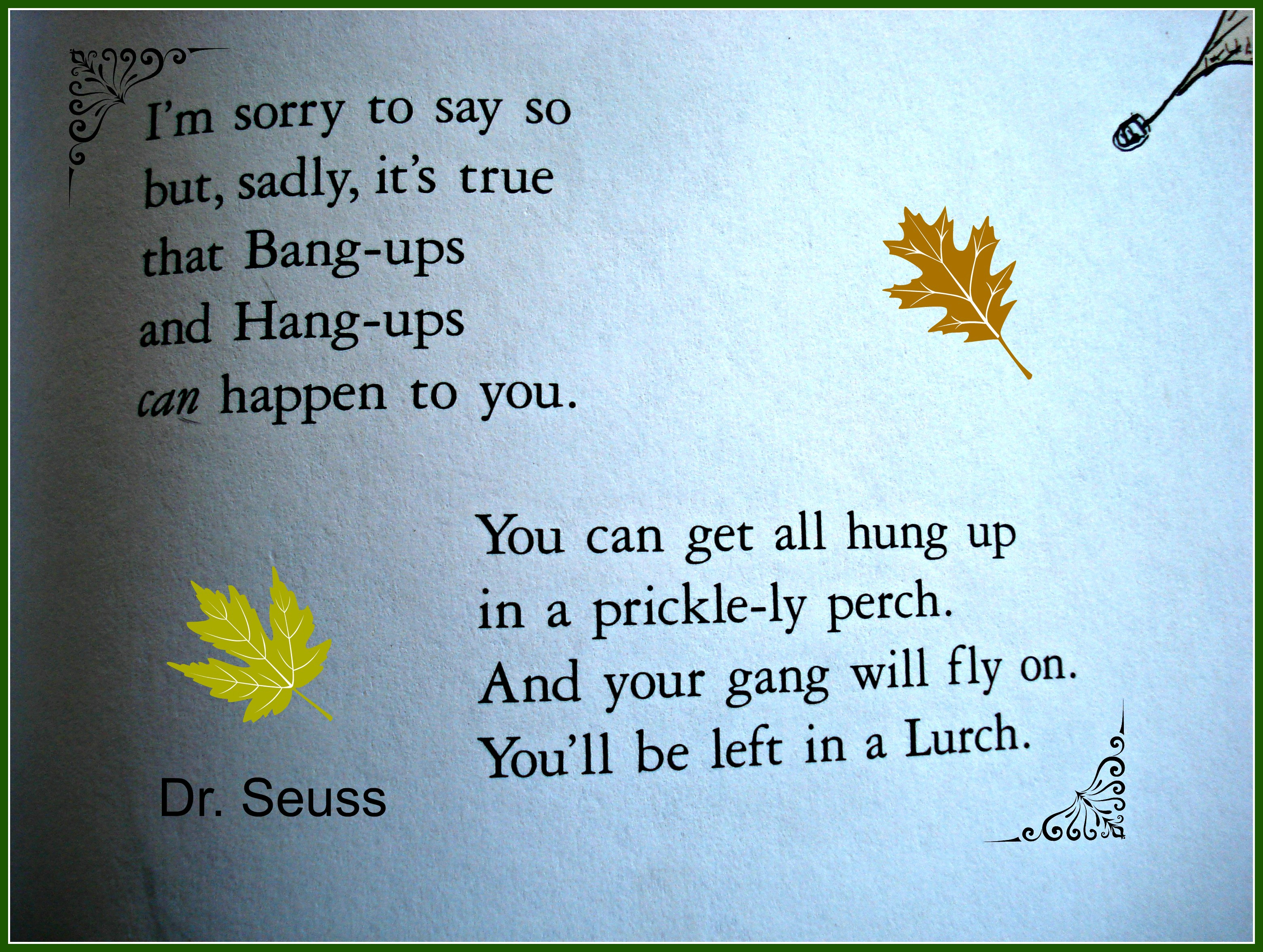 oh the places youll go hang ups and bang ups dr seuss