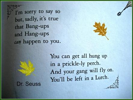 Oh the Places You'll Go Hang ups and Bang ups Dr. Seuss