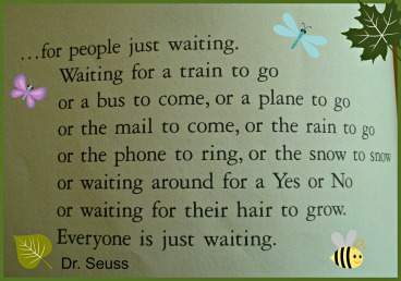 Oh the Places You'll Go Dr. Seuss The Waiting Place